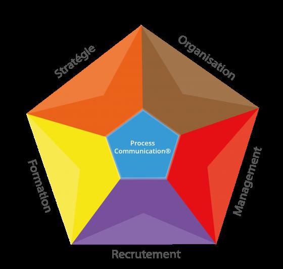 La process com comme pierre angulaire des conseils en stratégie, organisation, management, recrutement et formation